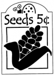 CORN SEEDS 5 CENTS